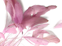 Light Pink Stripped Rooster Coque Tail Feathers