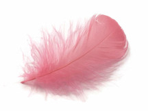 "1 Pack - 2-3"" Coral Goose Coquille Loose Feathers - 0.35 Oz."
