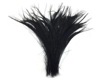 Dark black dyed wispy trimmed peacock feathers long