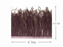 6 Inch Strip - Mocha Ostrich Fringe Trim Feather