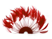 1 Piece - Red Half Beaded Pinwheel Stripped Rooster Hackle Feather Pads