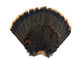 This complete tail fan is high quality and can be used for crafts, costumes, masks, jewelry, and more.