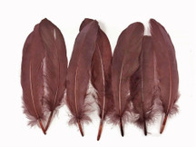 1 Pack - Brown Goose Satinettes Loose Feathers 0.3 Oz.