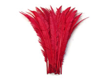 Red trimmed wispy feathers for crafts, floral, weddings, events, costumes.