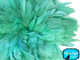 Aqua fluffy feathers short small strung for crafts