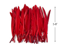 1 Pack - Red Duck Primary Wing Pointer Feathers 0.50 Oz.