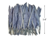 1 Pack - Silver Gray Duck Primary Wing Pointer Feathers 0.50 Oz.