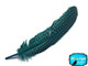 Guinea Fowl Wing Feathers Wholesale Dyed Turquoise Blue Image 2