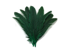 Stiff Pointer and Rounds Feathers Polka Dot Spotted Feathers Green for crafts, costumes, decoration.