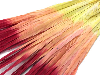 Ombre Multicolor Orange Red Yellow Long Tall Pheasant Tail Feathers