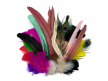 Collection 63 - Mix Random Feather Sample Pack (Bulk)