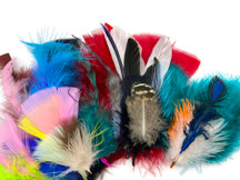 Collection 68 - Mix Random Feather Sample Pack (Bulk)