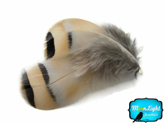 1/4 Lb - Natural Chukar Partridge Hen Plumage Wholesale Feather (Bulk)