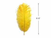 "10 Pieces - 8-10"" Yellow Ostrich Dyed Drabs Body Feathers"