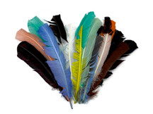 Collection 69 - Mix Random Feather Sample Pack (Bulk)