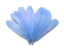 1/4 Lb - Light Blue Goose Nagoire Wholesale Feathers (Bulk)