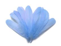 1/4 Lb - Light Blue Goose Nagoire Wholesale Feathers (Bulk)