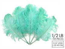 "1/2 Lb - 12-16"" Mint Green Ostrich Tail Wholesale Fancy Feathers (Bulk)"