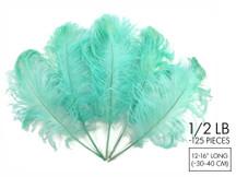 "1/2 Lb - 12-16"" Mint Green Ostrich Tail Wholesale Fancy Feathers (Bulk)"