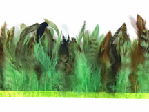Lime Green Chinchilla Rooster Saddle Feathers Trim 1 Yard