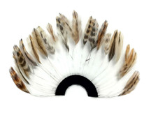 1 Piece - Chinchilla Half Beaded Pinwheel Stripped Rooster Hackle Feather Pads