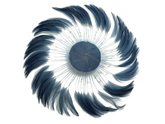 Dark Grey Whole Beaded Pinwheel Stripped Rooster Hackle Feather Plates