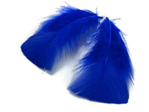 1 Pack - Royal Blue Dyed Turkey T-Base triangle Body Plumage Feathers 0.50 Oz.