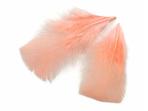 1 Pack - Peach Pink Dyed Turkey T-Base triangle Body Plumage Feathers 0.50 Oz.