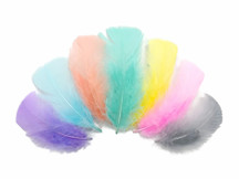 1/4 Lb - Pastel Mix Turkey T-Base Plumage Wholesale Feathers (Bulk)