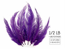 1/2 Lb - Purple Mini Spads Ostrich Wholesale Chick Body Feathers (Bulk)