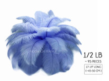 "1/2 Lb - 17-19"" Light Blue Ostrich Large Drab Wholesale Feathers (Bulk)"