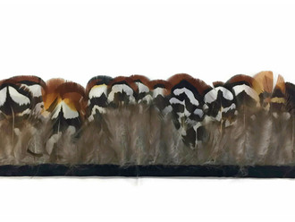 1 Yard - Natural Brown Venery Pheasant Plumage Feather Trim