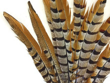 Grey, brown, and black beautiful pheasant feathers. These natural reeves venery feathers come from the tail of a pheasant. They can be used as a dramatic element to floral arrangements and centerpieces.
