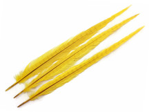 "10 Pieces - 20-22"" YELLOW Long Ringneck Pheasant Tail Feathers"
