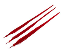 "10 Pieces - 20-22"" RED Long Ringneck Pheasant Tail Feathers"