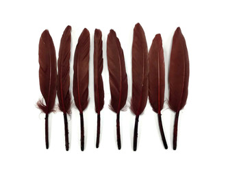 Brown Duck Cochettes Loose Feathers 0.3 Oz. 1 Pack