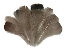 "1/4 Lb - 2-3"" Natural Brown Goose Coquille Loose Wholesale Feathers (Bulk)"