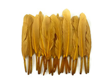 1 Pack - Old Gold Dyed Duck Cochettes Loose Wing Quill Feather 0.30 Oz.