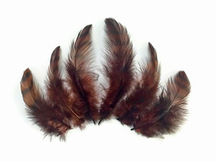 10 Pieces - BROWN Dyed Grizzly Hen Saddle Feather