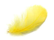 "1 Pack - 2-3"" Yellow Goose Coquille Loose Feathers - 0.35 Oz."