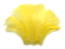 "1/4 Lb - 2-3"" Yellow Goose Coquille Loose Wholesale Feathers (Bulk)"