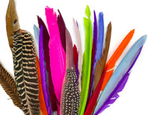 Collection 92 - Mix Random Feather Sample Pack (Bulk)