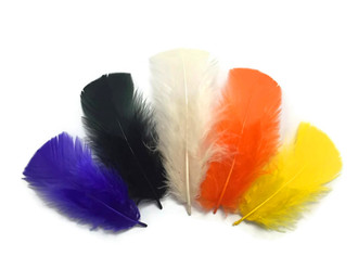1/4 Lb - Halloween Mix Turkey T-Base Plumage Wholesale Feathers (Bulk)