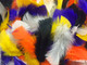 Turkey feather halloween mix. This assortment of feathers includes all of your spooky favorites including orange, black, white, yellow, and purple.