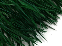 1 Yard - Hunter Green Goose Biots Stripped Wing Wholesale Feather Trim