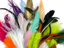 Collection 95 - Mix Random Feather Sample Pack (Bulk)