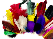 Collection 99 - Mix Random Feather Sample Pack (Bulk)
