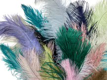 Collection 100 - Mix Random Feather Sample Pack (Bulk)