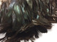 Black and green natural colored craft feathers