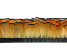 1 Yard - Natural Orange Tippet Golden Pheasant Feather Trim